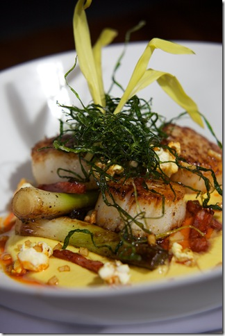 highpoint Seared Dayboat Scallops