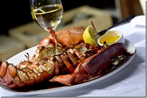 sea-fire lobster